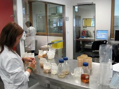 Laboratório de Microbiologia e Biologia molecular