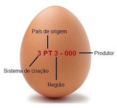 Figura 3: Código inscrito na casca do ovo